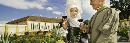 Veranstaltung Pasteten, Götterwein und Pralinen