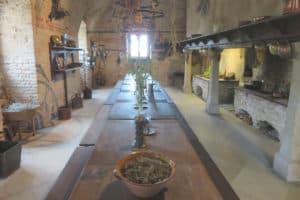 Wildküche auf Schloss Hof